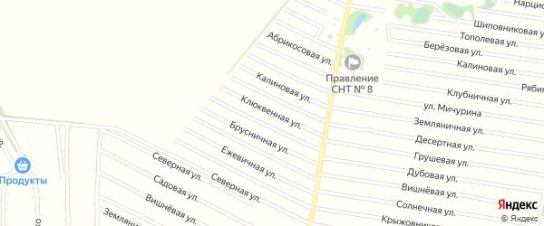 Голубичная улица на карте садового некоммерческого товарищества N 7 с номерами домов