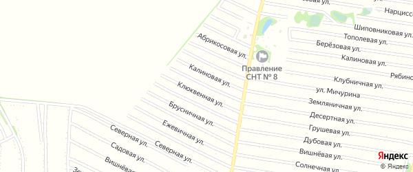 Клюквенная улица на карте садового некоммерческого товарищества N 13 с номерами домов