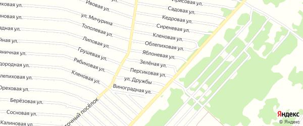 Зеленая улица на карте садового некоммерческого товарищества N 8 с номерами домов