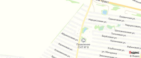 Пионовая улица на карте садового некоммерческого товарищества N 7 с номерами домов