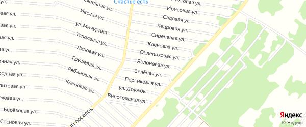 Яблоневая улица на карте садового некоммерческого товарищества N 15 с номерами домов