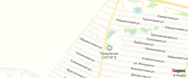 Айвовая улица на карте садового некоммерческого товарищества N 7 с номерами домов