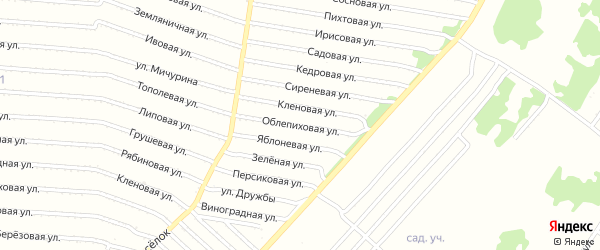 Облепиховая улица на карте садового некоммерческого товарищества N 18 с номерами домов