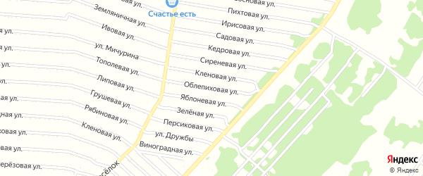 Облепиховая улица на карте садового некоммерческого товарищества N 1 с номерами домов