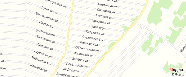 Сиреневая улица на карте садового некоммерческого товарищества N 16 с номерами домов