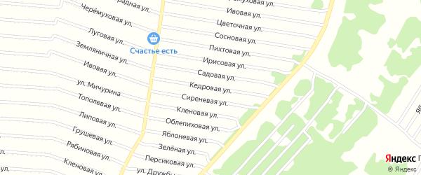 Кедровая улица на карте садового некоммерческого товарищества N 15 с номерами домов