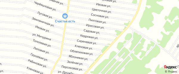 Кедровая улица на карте садового некоммерческого товарищества N 8 с номерами домов
