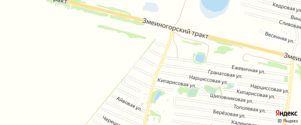 Пихтовая улица на карте садового некоммерческого товарищества N 4 с номерами домов