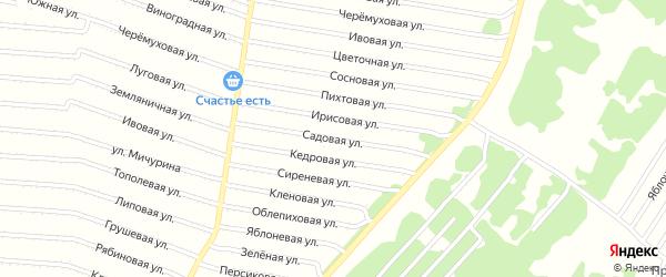 Садовая улица на карте садового некоммерческого товарищества N 2 с номерами домов