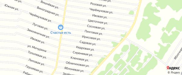 Ирисовая улица на карте садового некоммерческого товарищества N 16 с номерами домов