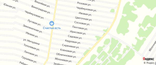 Ирисовая улица на карте садового некоммерческого товарищества N 8 с номерами домов