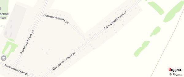Большевистская улица на карте села Романово с номерами домов