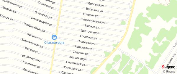 Сосновая улица на карте садового некоммерческого товарищества N 4 с номерами домов