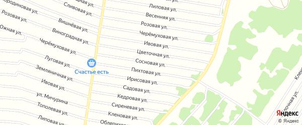 Сосновая улица на карте садового некоммерческого товарищества N 1 с номерами домов