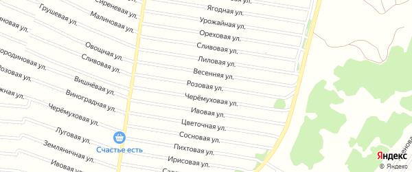 Розовая улица на карте садового некоммерческого товарищества N 8 с номерами домов