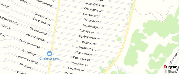 Черемуховая улица на карте садового некоммерческого товарищества N 9 с номерами домов