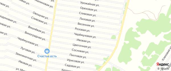 Черемуховая улица на карте садового некоммерческого товарищества N 7 с номерами домов