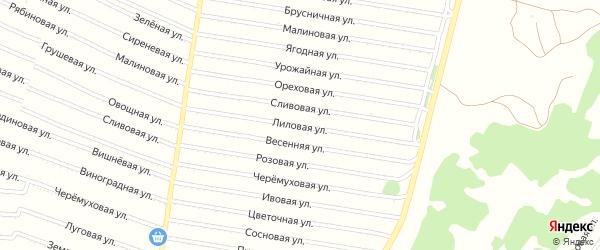 Лиловая улица на карте садового некоммерческого товарищества N 13 с номерами домов