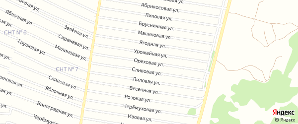 Ореховая улица на карте садового некоммерческого товарищества N 9 с номерами домов