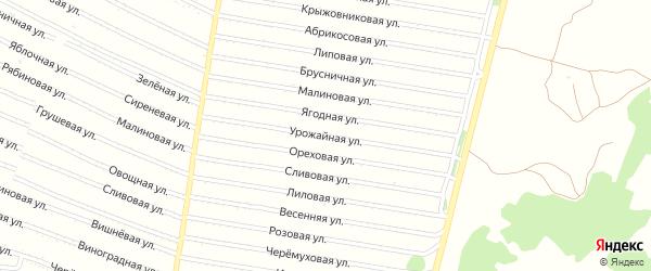 Урожайная улица на карте садового некоммерческого товарищества N 1 с номерами домов