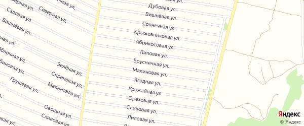 Брусничная улица на карте садового некоммерческого товарищества N 7 с номерами домов