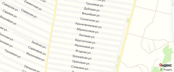 Липовая улица на карте садового некоммерческого товарищества N 4 с номерами домов