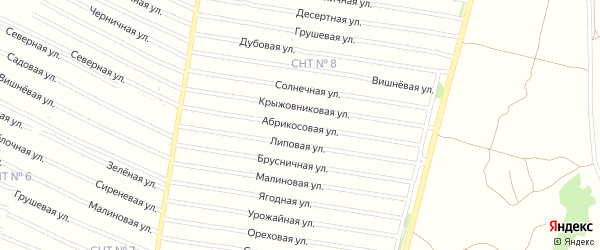 Абрикосовая улица на карте садового некоммерческого товарищества N 16 с номерами домов