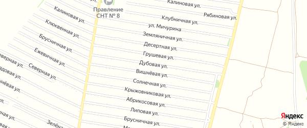 Дубовая улица на карте садового некоммерческого товарищества N 3 с номерами домов