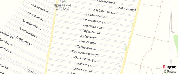 Дубовая улица на карте садового некоммерческого товарищества N 15 с номерами домов