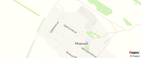 Цветочная улица на карте Мирного поселка с номерами домов