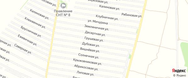 Грушевая улица на карте садового некоммерческого товарищества N 2 с номерами домов