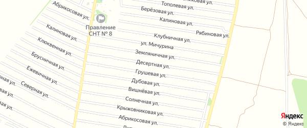 Десертная улица на карте садового некоммерческого товарищества N 8 с номерами домов