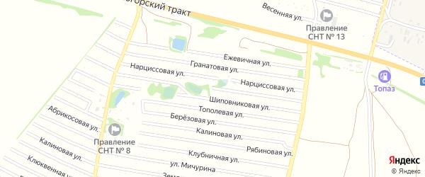 Кипарисовая улица на карте садового некоммерческого товарищества N 8 с номерами домов