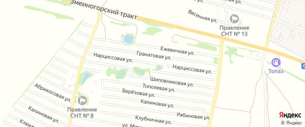 Нарциссовая улица на карте садового некоммерческого товарищества N 8 с номерами домов