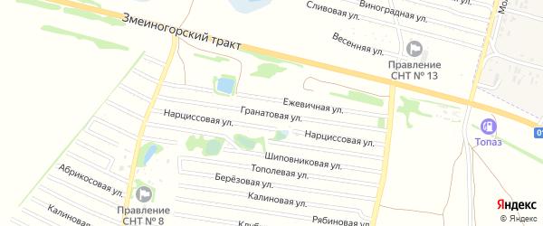 Гранатовая улица на карте садового некоммерческого товарищества N 15 с номерами домов