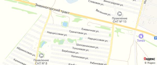 Гранатовая улица на карте садового некоммерческого товарищества N 8 с номерами домов