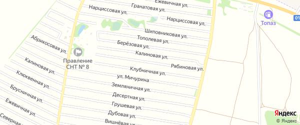 Рябиновая улица на карте садового некоммерческого товарищества N 16 с номерами домов