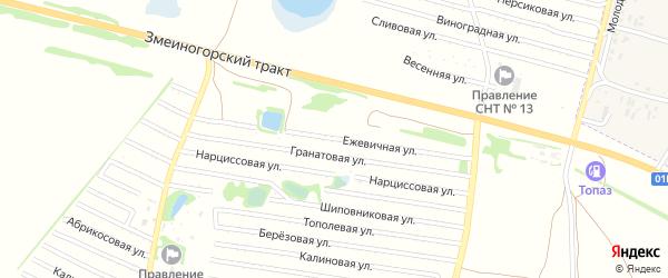 Ежевичная улица на карте садового некоммерческого товарищества N 16 с номерами домов