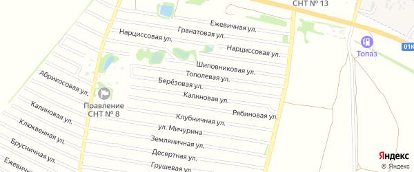 Березовая улица на карте садового некоммерческого товарищества N 15 с номерами домов