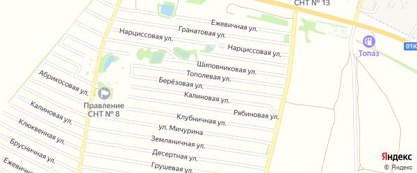 Березовая улица на карте садового некоммерческого товарищества N 16 с номерами домов