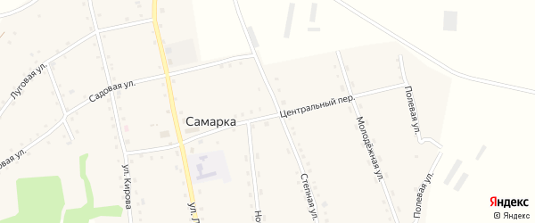 Центральный переулок на карте села Самарки с номерами домов