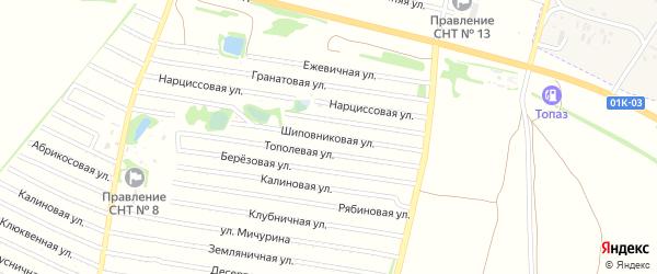 Шиповниковая улица на карте садового некоммерческого товарищества N 8 с номерами домов