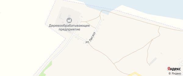 Улица Межхозяйственный ЛЕСХОЗ на карте Камня-на-Оби с номерами домов