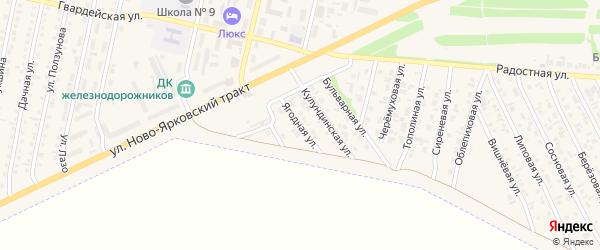 Ягодная улица на карте Камня-на-Оби с номерами домов