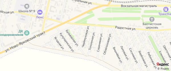 Черемуховая улица на карте Камня-на-Оби с номерами домов