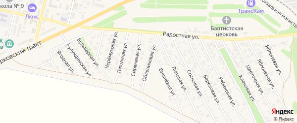 Облепиховая улица на карте Камня-на-Оби с номерами домов