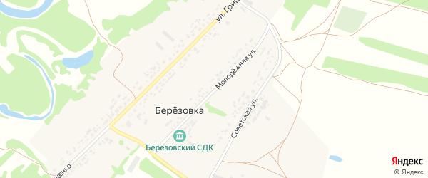 Молодежная улица на карте поселка Березовки с номерами домов