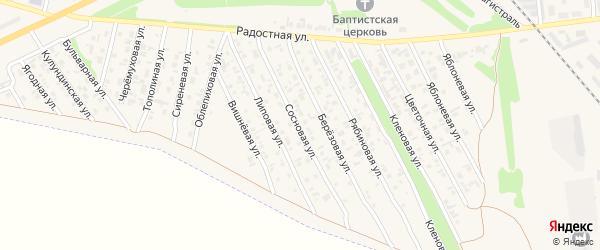 Сосновая улица на карте Камня-на-Оби с номерами домов
