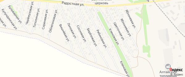 Березовая улица на карте Камня-на-Оби с номерами домов