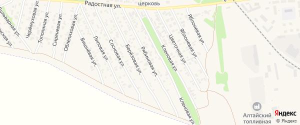 Рябиновая улица на карте Камня-на-Оби с номерами домов